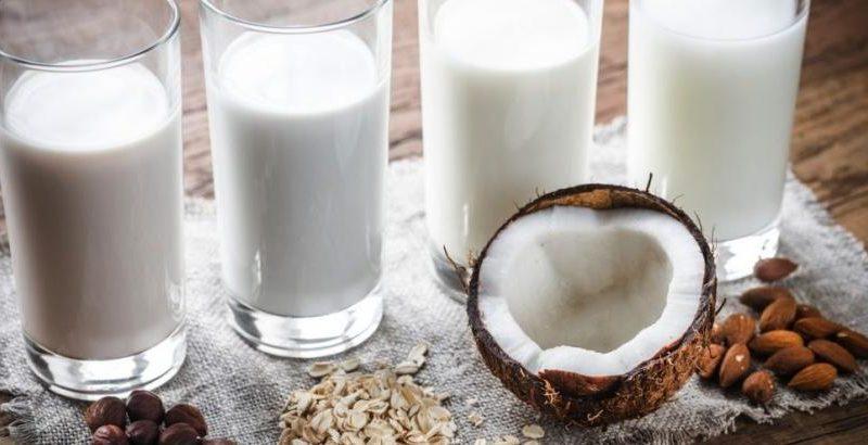 Tipos de leche para tu consumo
