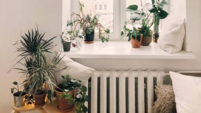 Cómo ayudan los hogares sostenibles a la salud