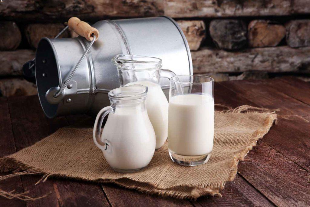 La leche de vaca es uno de los tipos de leche más común